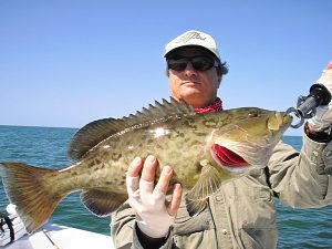 Grouper Fishing on the Crystal River in Citrus County, Florida