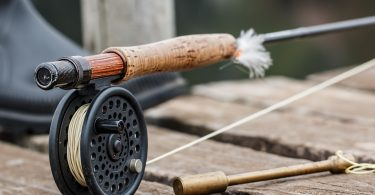 Homosassa Florida Fishing